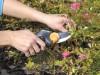 Nůžky převodové Fiskars (111540) - foto2