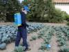 Zádový postřikovač  MATABI SUPER GREEN 12l - foto3